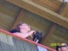 Alpencup 2009